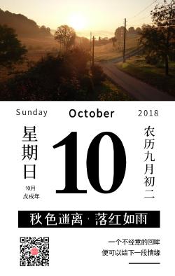 秋季十月日签手机海报