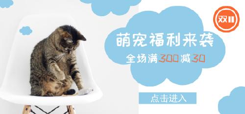 双十一猫粮促销微博焦点图