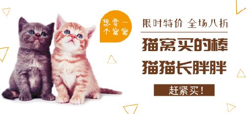 宠物猫窝猫粮促销微博焦点图