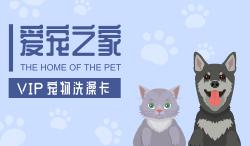简约可爱卡通宠物店宠物医院会员卡