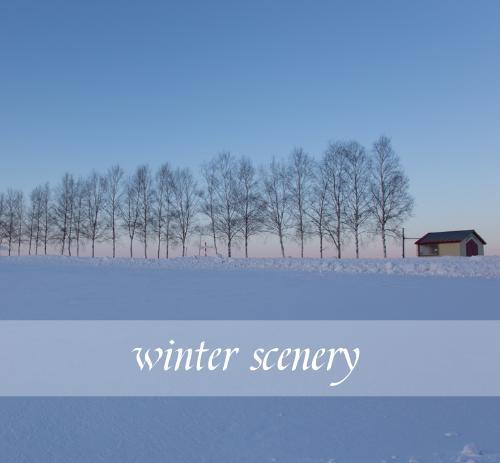 簡約冬季雪景微博朋友圈封面