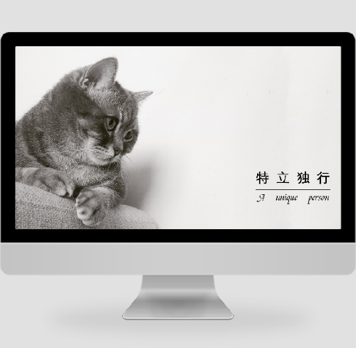 一只猫pc桌面