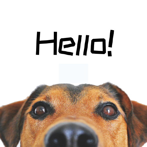 打招呼狗狗手機微博封面