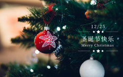 简约圣诞祝福明信片
