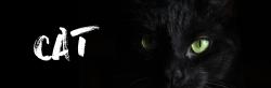 黑色猫咪微博封面
