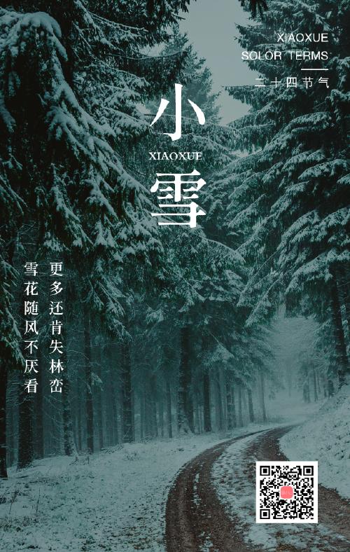 简约小雪二十四节气手机海报
