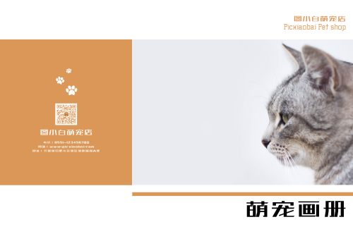 橙色简约萌宠喵咪宣传画册