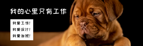 爱工作的小狗微博封面