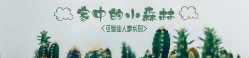 綠色植物盆栽淘寶banner