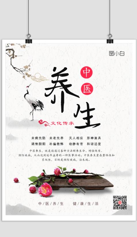 中国风中医养生文化宣传海报