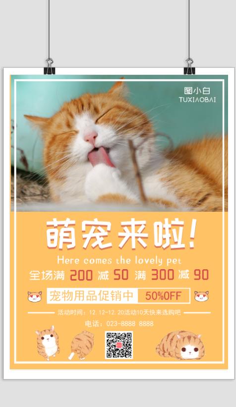 可爱猫咪宠物店促销打折宣传海报