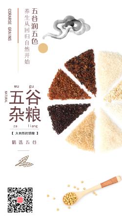 简洁天然五谷杂粮产品展示