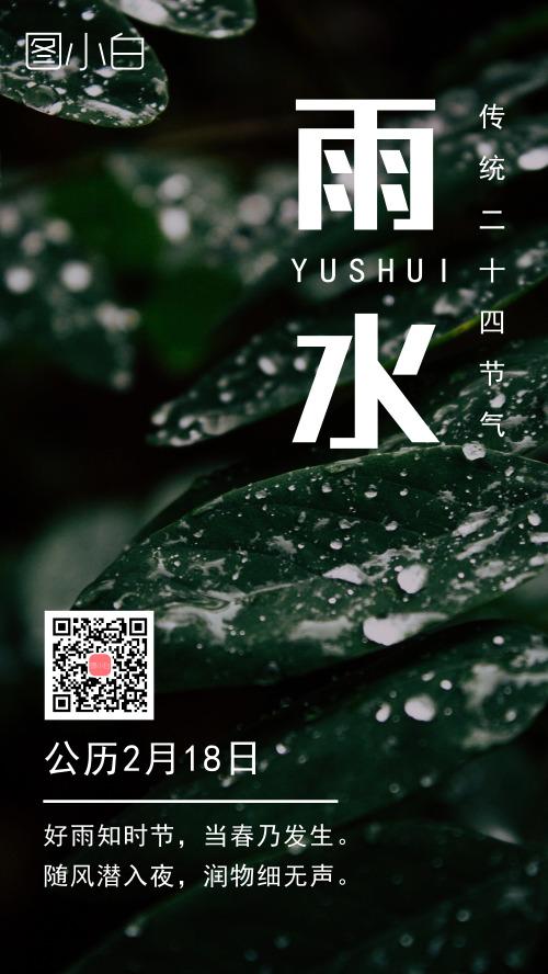 雨水二十四节气绿色清新手机海报