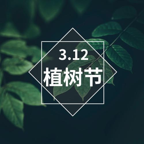 简约清新高清摄影植树节公众号宣传