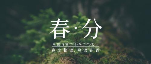 简约清新节气春分公众号宣传