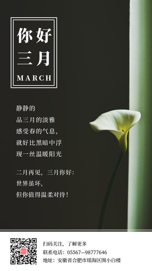 简约你好三月手机海报