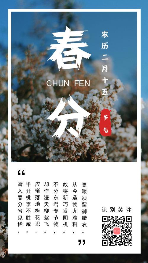 简约小清新春分节气宣传手机海报