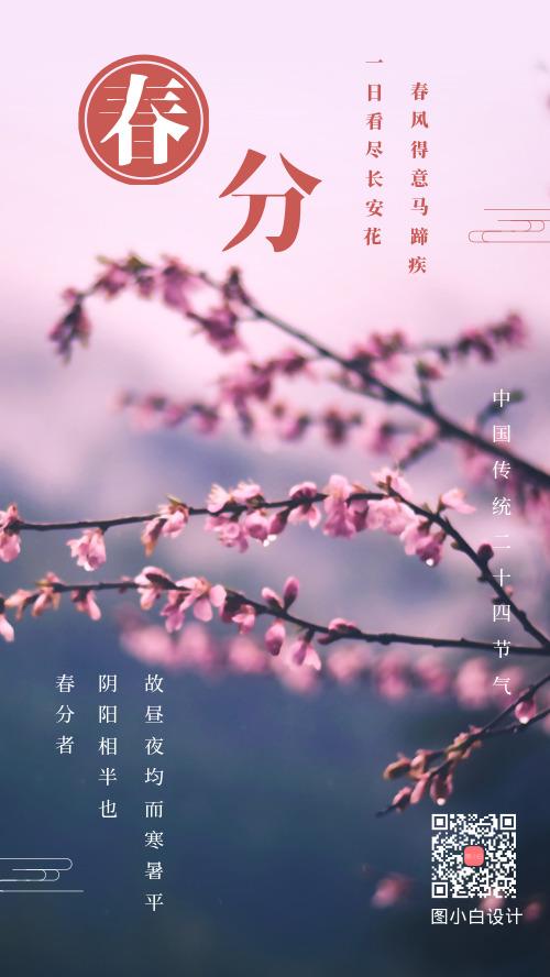 中国传统二十四节气春分手机海报