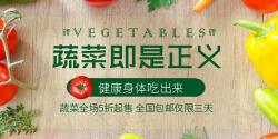 蔬菜即是正义特价促销海报banner