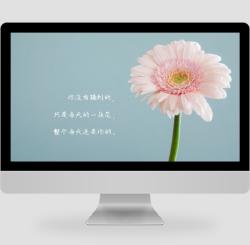 简约清新文艺花朵PC桌面