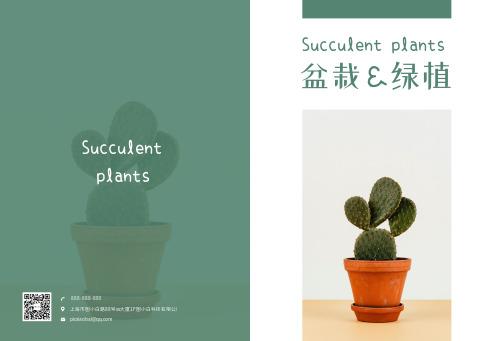 简约绿色植物小清新多肉盆栽画册