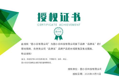 绿色几何商务企业通用授权证书