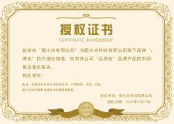黄色简约复古企业通用授权证书