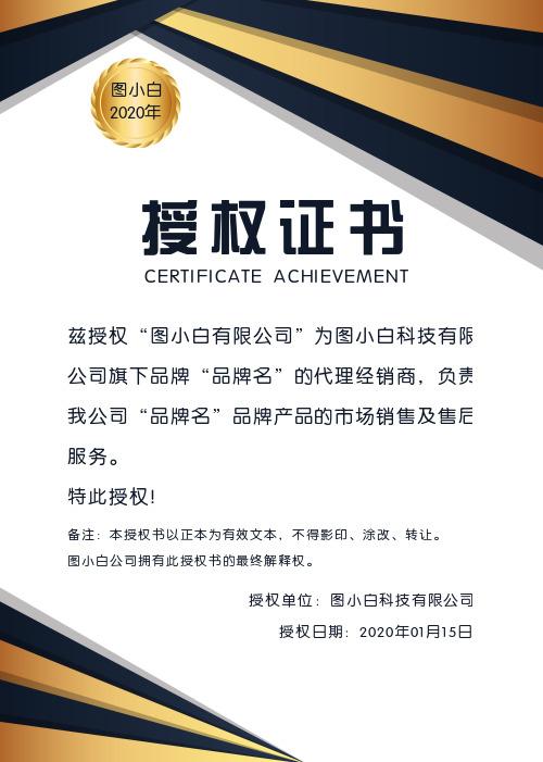 金色商务大气企业通用授权证书