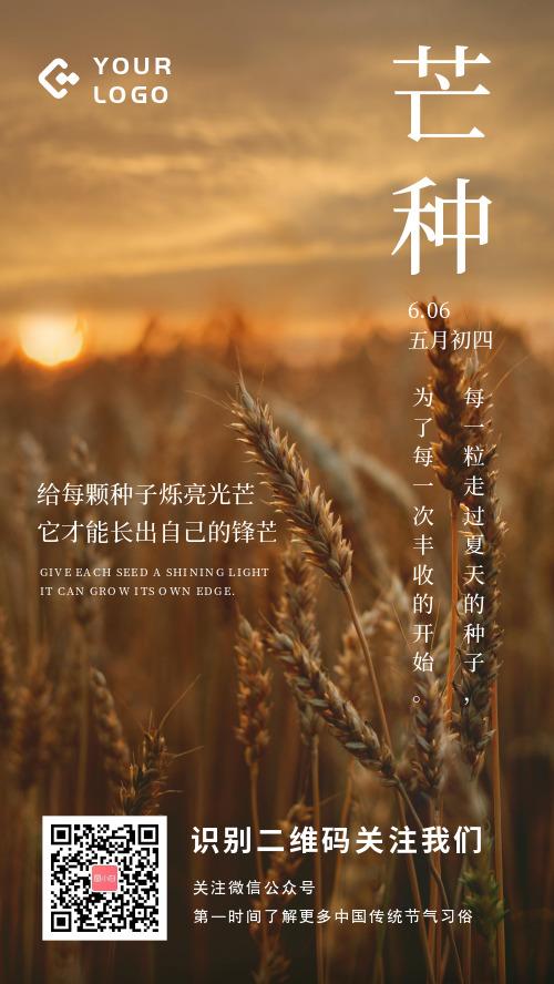 简约图文芒种节气宣传手机海报