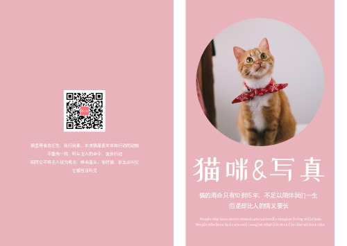 简约可爱猫咪写真相册书