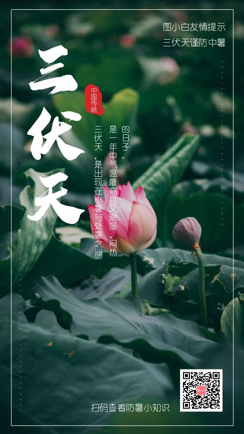 简约图文三伏天防暑友情提示手机海报