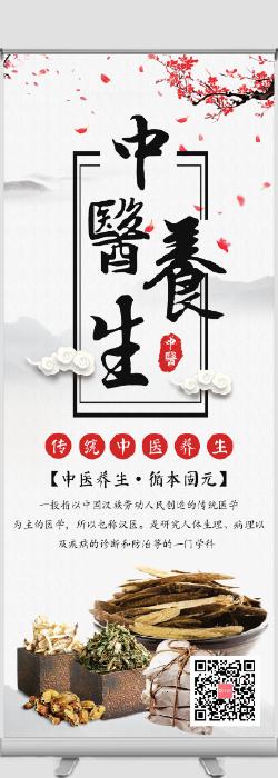 水墨中国风中医养生宣传易拉宝