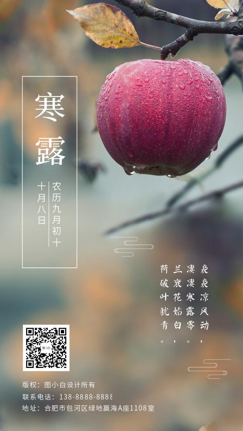 寒露传统二十四节气简约手机海报