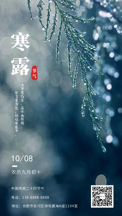 寒露传统二十四节气宣传海报