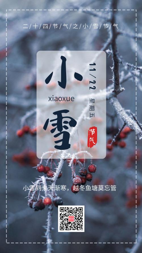 小雪传统节气宣传海报