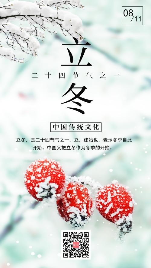 传统二十四节气立冬宣传海报
