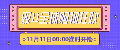 时尚紫色双十一购物攻略宣传