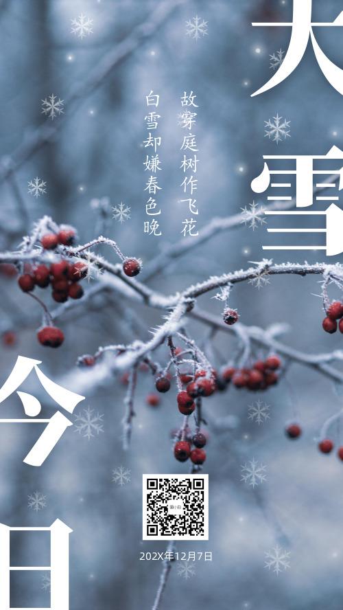 二十四节气之大雪节气海报