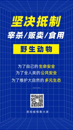 武汉疫情抗疫倡议保护野生动物海报
