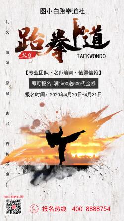 简约风跆拳道武术培训招生宣传手机海报