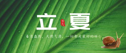 绿色清新立夏节气公众号首图