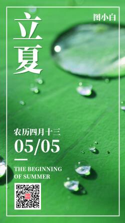立夏传统节气祝福问候摄影绿叶海报
