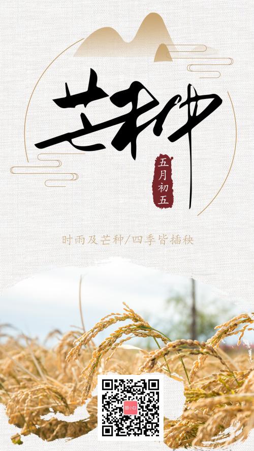 清新中国风芒种传统节气手机海报