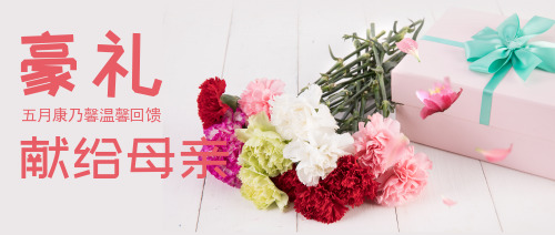 母亲节购买康乃馨活动公众号封面