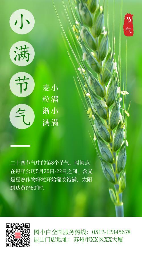 绿色清新小满节气品牌借势宣传海报