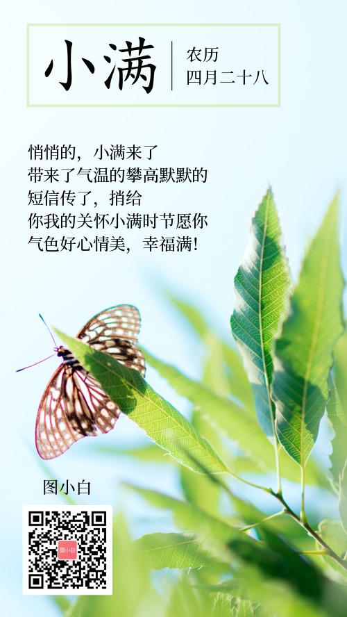 清新简约风小满植物美好心情个签