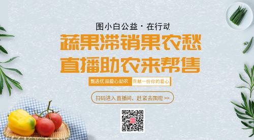直播销售蔬菜横版海报