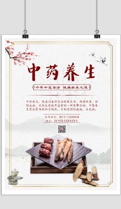 中国风中药养生宣传海报
