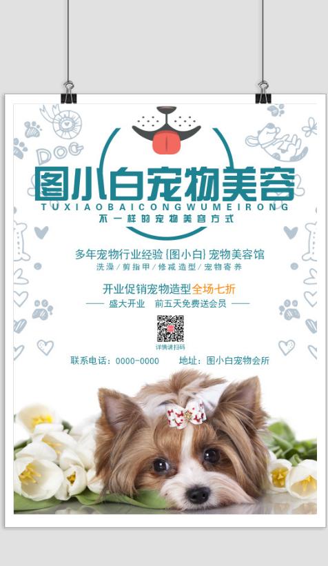 宠物会所宠物美容宣传印刷海报