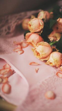 文艺风粉色玫瑰花手机壁纸